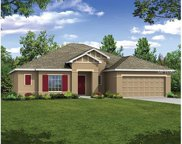 1239 James Lane, Poinciana image