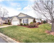 915  Platinum Drive, Fort Mill image