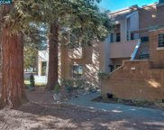 230 Copper Ridge Rd, San Ramon image