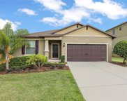 30129 Kladruby Point, Mount Dora image