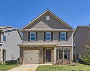 286 Bickley View Court, Chapin image