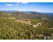 30153 Wild West Trail, Evergreen image