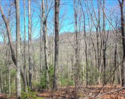 LOT 1 Trail Tree Drive, Blairsville image