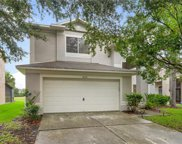18176 Sandy Pointe Drive, Tampa image
