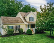 7 Sycamore Court, Amherst image