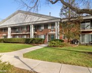 2403 South Goebbert Road Unit F204, Arlington Heights image