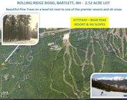 Rolling Ridge Road Unit #Parcel ID: BART M:3ROLRG L:00519 S:00000, Bartlett image