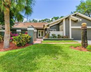 1321 Indian Trail N, Palm Harbor image