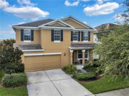9017 Sienna Moss Lane, Riverview image