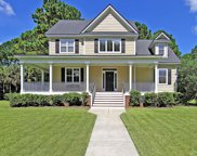 3413 Southern Cottage Way, Mount Pleasant image