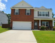 515 Eagles Rest Drive, Chapin image