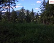 Lot 10  Bear Claw Rd, Clark Fork image