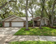 1708 Country Trails Drive, Safety Harbor image