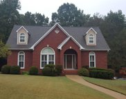 207 English Walnut Dr, Trussville image