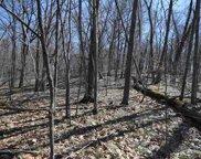 L167 Black Forest Dr, Woodland image