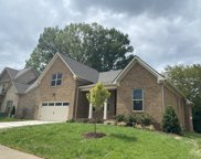 224 Star Pointer Way, Spring Hill image