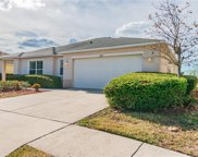 5104 Butterfly Shell Drive, Apollo Beach image