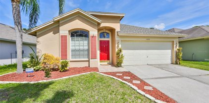 10266 Oasis Palm Drive, Tampa