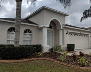 13941 Chalk Hill Place, Riverview image