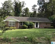 2317 Lane Cir, Mountain Brook image