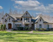 7003 Cross Hook Court, Summerfield image
