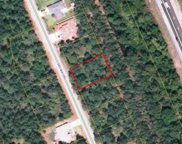 53 Selma Trail, Palm Coast image