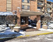 301 Lake Hinsdale Drive Unit 208, Willowbrook image