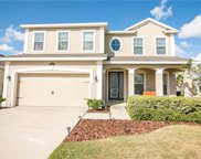 12201 Morgans Bluff Place, Riverview image