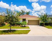 10530 Medford Lake Drive, Riverview image