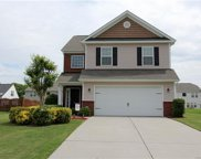 12417  Dove Meadow Drive, Charlotte image