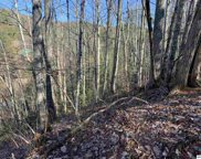 Lot 503 Overlook Ct, Sevierville image
