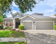 5923 Tealwater Place, Lithia image