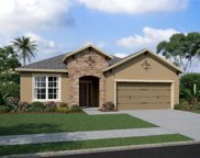 11532 Navel Orange Way, Tampa image