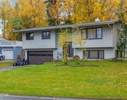 13321 Cove Circle, Anchorage image