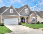 1816  Painted Horse Drive, Indian Trail image