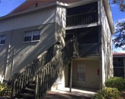 2200 Gladys Street Unit 3007, Largo image