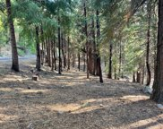 1587 Shoshone  Drive, Camp Connell image