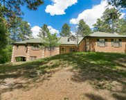 1688 East Timber Meadow Court, Franktown image