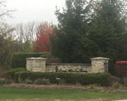 23695 North Curtis Court, Long Grove image