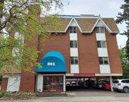 801 N Pennsylvania Street Unit 306, Denver image
