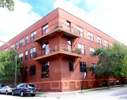 1061 West 16Th Street Unit 208, Chicago image