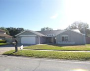 14805 Saint Ives Place, Tampa image