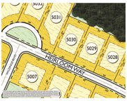 8227 Heirloom Blvd (Lot 5030), College Grove image