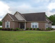 2537 Bear Stand Trail, Myrtle Beach image