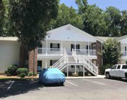 157 Egret Run Lane Unit 522, Pawleys Island image