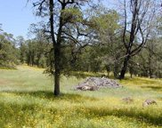 14010 Cub Trail, Jones Valley image
