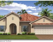 3863 Golden Knot Drive, Kissimmee image