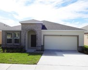 978 Berry Leaf Court, Apopka image