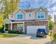 409 Skygap Court, Antioch image