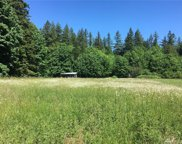9999 Maple Grove Rd, Quilcene image